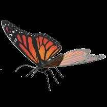 Metal Earth Monarch Butterfly model kit