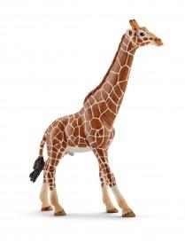 Schleich Giraffe Male