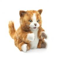Tabby Cat Puppet