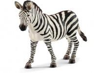 Zebra - Female