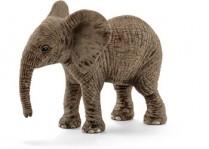 African Elephant- Calf