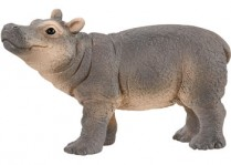 Hippopotamus - Baby